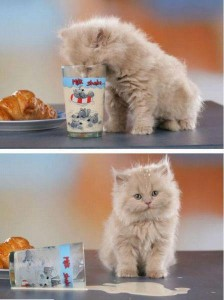 fincsi volt a reggeli