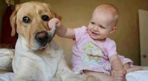 Mutasd a fogad! :)